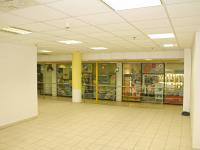 hlavní prostor - Pronájem obchodních prostor 185 m², České Budějovice