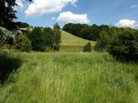 okolní pozemky - Prodej zemědělského objektu 363 m², Albrechtice