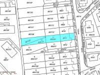 Katastrální mapa - Prodej domu v osobním vlastnictví 217 m², Žamberk