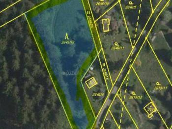 snímek plochy lesa a travnatého pozemku - Prodej pozemku 2778 m², Česká Třebová