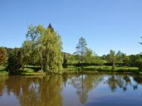 Foto okolí - rybník pod objektem (Prodej domu v osobním vlastnictví 237 m², Všemyslice)