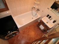 koupelna - Prodej bytu 3+1 v osobním vlastnictví 73 m², Vyšší Brod