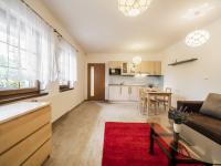 Apartmán 1+kk, suterén - Prodej domu v osobním vlastnictví 220 m², Rokytnice nad Jizerou