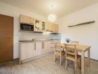 suterén, samostatný byt 1+0 - Prodej domu v osobním vlastnictví 220 m², Rokytnice nad Jizerou