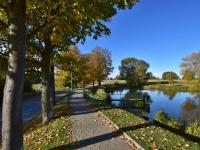 okolí - Prodej domu v osobním vlastnictví 90 m², Srubec