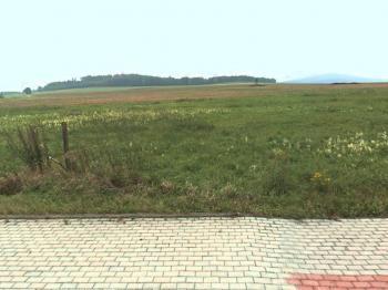 pozemek v létě - Prodej pozemku 835 m², Vrábče
