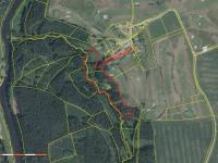 katastrální mapa s vyzbnačením prodávaných pozemků - Prodej domu v osobním vlastnictví 220 m², Mirkovice