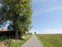 výhledy do okolí - Pronájem domu v osobním vlastnictví 80 m², Srubec