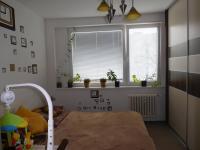 Pronájem bytu 3+1 v družstevním vlastnictví 82 m², České Budějovice
