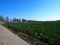 Prodej pozemku 29477 m², Praha 9 - Vinoř
