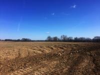 Pozemek (Prodej pozemku 11775 m², Jirny)