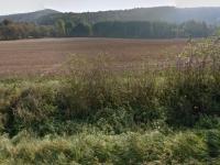 Prodej pozemku 4186 m², Psáry