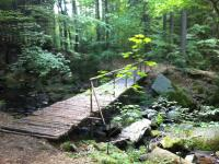 Příroda a okolí (Prodej hotelu 2197 m², Kostelec nad Černými lesy)