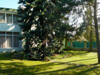 pohled na dům ze zahrady (Prodej domu v osobním vlastnictví 448 m², Šestajovice)