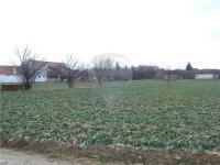 Pozemek (Prodej pozemku 2305 m², Rajhrad)