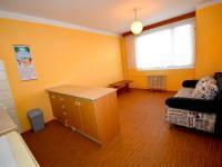 Kuchyň (Pronájem bytu 2+kk v osobním vlastnictví 47 m², Hradec Králové)