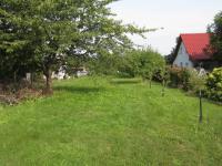 zahrada  (Prodej chaty / chalupy 40 m², Choltice)