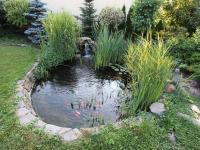 Filtrační jezírko s rybami a vodopádem (Prodej domu v osobním vlastnictví 137 m², Klučov)