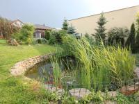 Filtrační jezírko s rybami (Prodej domu v osobním vlastnictví 137 m², Klučov)