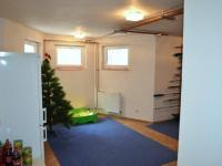 Místnost v 1PP - sklep - Prodej domu v osobním vlastnictví 269 m², Praha 9 - Horní Počernice