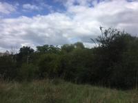 Prodej pozemku 3570 m², Praha 10 - Hostivař
