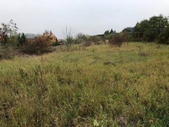 celkový pohled na pozemek - Prodej pozemku 4209 m², Velké Přílepy