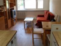 obývací pokoj (Pronájem bytu 2+kk v osobním vlastnictví 43 m², Praha 10 - Strašnice)