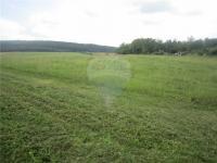 Prodej pozemku 9326 m², Rpety