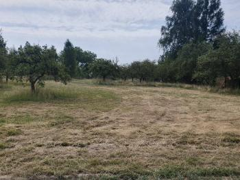 Prodej pozemku 896 m², Orlová