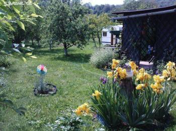 Prodej chaty / chalupy 30 m², Javorník (ID 130-N02