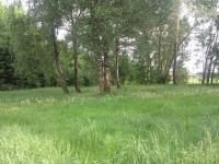 Prodej pozemku 2602 m², Lučina