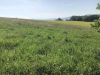 Prodej pozemku 785 m², Valašské Meziříčí