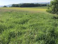 Prodej pozemku 799 m², Valašské Meziříčí