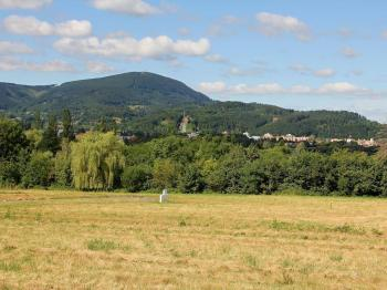 Prodej pozemku 2368 m², Tichá (ID 133-N01366)