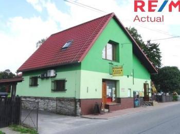 Vila, větší RD na prodej, Ženklava