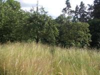 Prodej pozemku 1228 m², Hartvíkovice