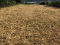 Prodej pozemku 2412 m², Popůvky