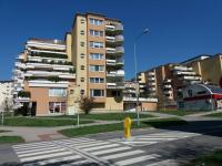 Prodej bytu 4+kk v družstevním vlastnictví 210 m², Brno