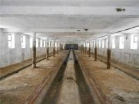 vnitřní prostor (Prodej zemědělského objektu 800 m², Mezná)