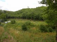 Prodej pozemku 1378 m², Bílovice nad Svitavou
