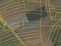 Prodej pozemku 4017 m², Průhonice