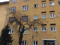 Prodej bytu 2+1 v osobním vlastnictví 53 m², Hodonín