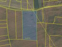 Prodej pozemku 13469 m², Průhonice