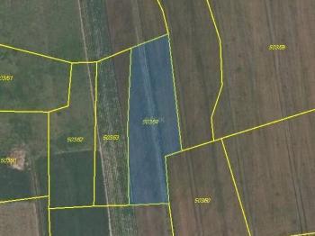 Prodej pozemku 1512 m², Průhonice