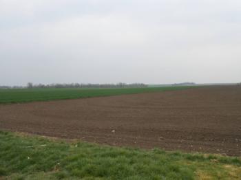 Prodej pozemku 895 m², Damnice