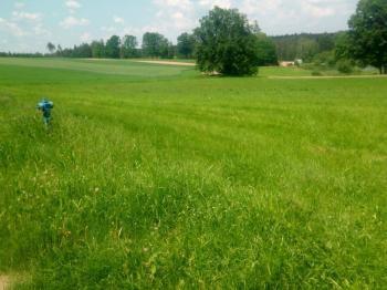 Prodej pozemku 7506 m², Hořice