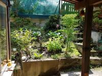 zahrada - Prodej chaty / chalupy 80 m², Kamenný Přívoz