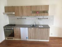 Pronájem bytu 1+1 v osobním vlastnictví, 50 m2, Horní Cerekev