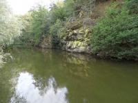 řeka Jihlava - Prodej chaty / chalupy 55 m², Přibyslavice