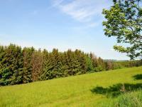 Prodej pozemku 10157 m², Mohelnice